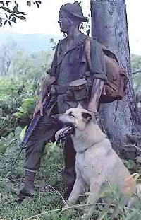 Lance Corporal Ralph H. McWilliams and his scout dog, Major, Vietnam, November 1967